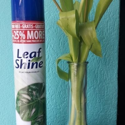 Leaf Shine Spray